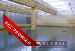 GB1-HW-266 hale Wynajem